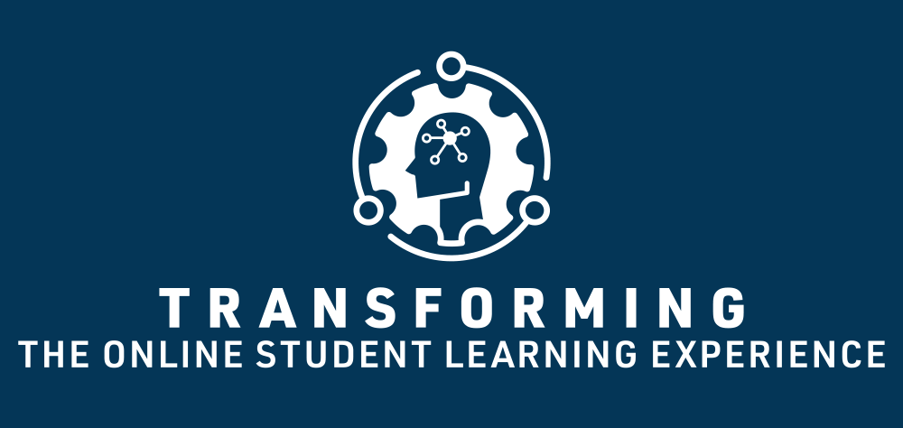 Transforming the Online Student Learning Experience